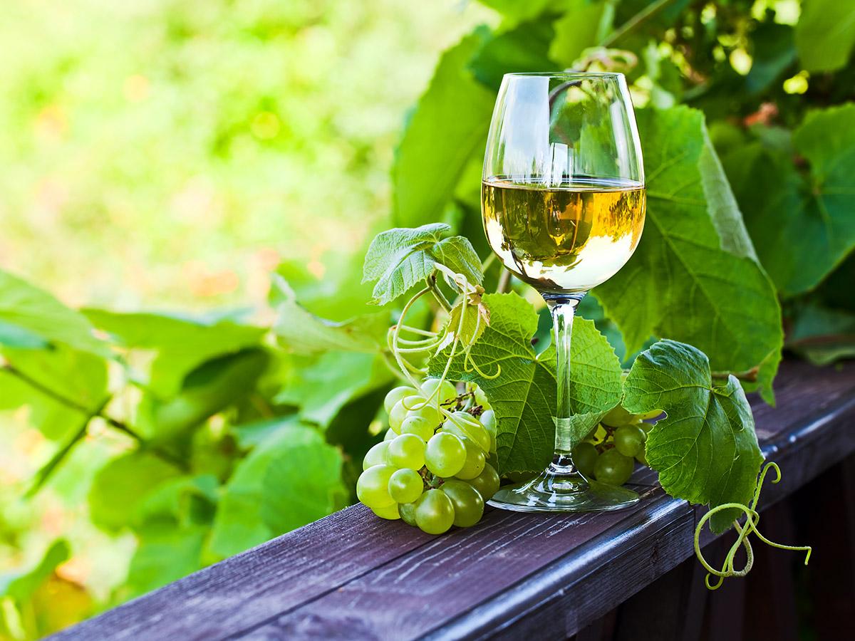 зеленое вино картинки поклонники модные